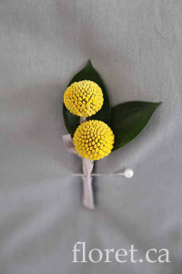 Billy Button Boutonniere | Floret.ca